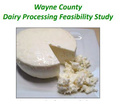 An image of the cover page of the Wayne County Dairy Processing Feasibility Study. Opens in new window